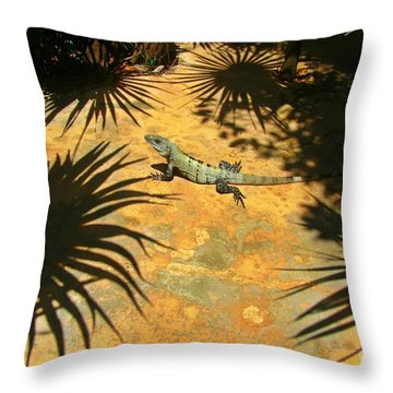 Soaking Up The Rays Throw Pillow by Halifax photographer John Malone