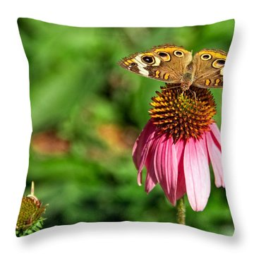 Throw Pillow featuring the photograph Soaking Up The Sun by Dave Files
