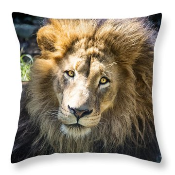 Soaking Up The Sun Throw Pillow by Jaki Miller