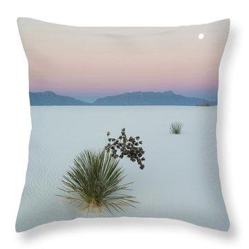 Yucca Elata Throw Pillows