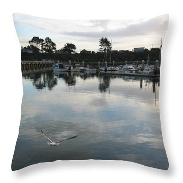 Throw Pillow featuring the photograph Soar by Dianne Levy