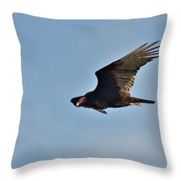 Throw Pillow featuring the photograph Soaring by David Porteus