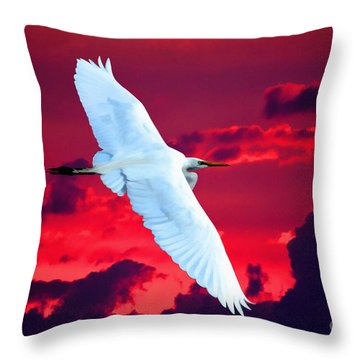 Soaring Heights Throw Pillow