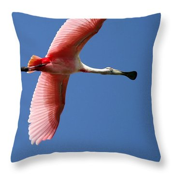 Soaring High Roseate Spoonbill Throw Pillow