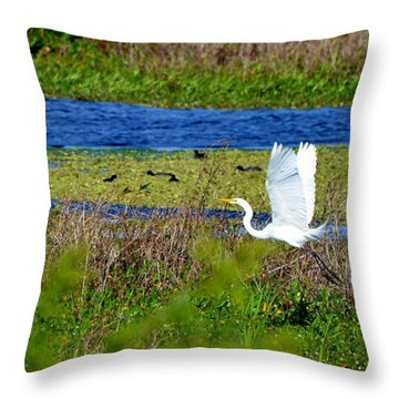 Soaring Over The Rainbow Throw Pillow