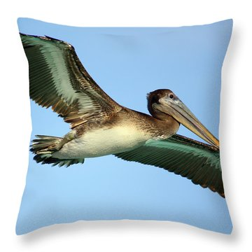 Throw Pillow featuring the photograph Soaring Pelican by Suzanne Stout