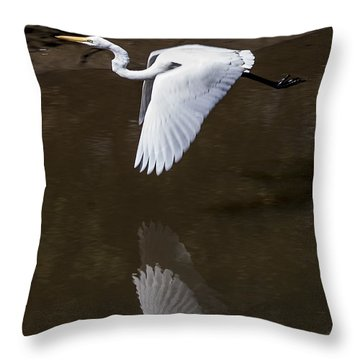Soaring Reflection Throw Pillow