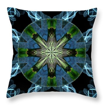 Soaring Spirit Throw Pillow