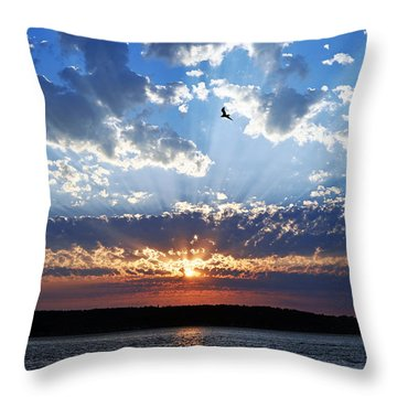 Soaring Sunset Throw Pillow