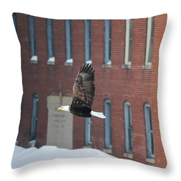 Throw Pillow featuring the photograph Soaring To Greatness by Viviana  Nadowski