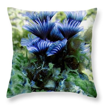 Throw Pillow featuring the photograph Social Feather Duster Cluster - A Social Gathering by Amy McDaniel