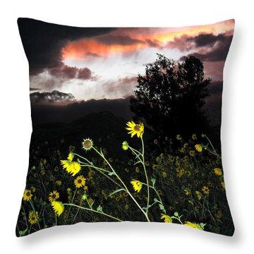Socorro Sunset Throw Pillow by Steven Ralser