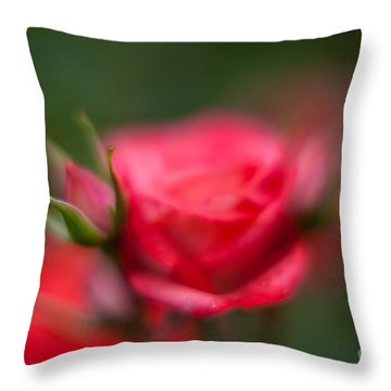 Soft And Peaceful Throw Pillow by Mike Reid