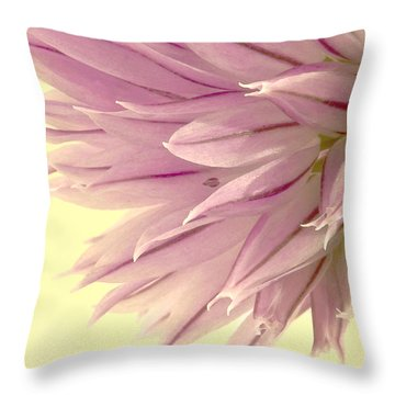 Soft And To The Point Throw Pillow by Sandra Foster