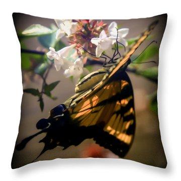 Soft As The Morning Light Throw Pillow by Karen Wiles