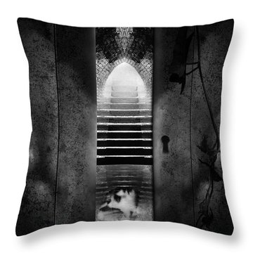 Soft Asylum Throw Pillow by Bob Orsillo