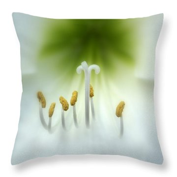 Soft Beauty Throw Pillow by Lynn Sprowl