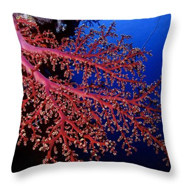 Soft Coral Throw Pillow
