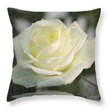 Soft Cream Rose Throw Pillow