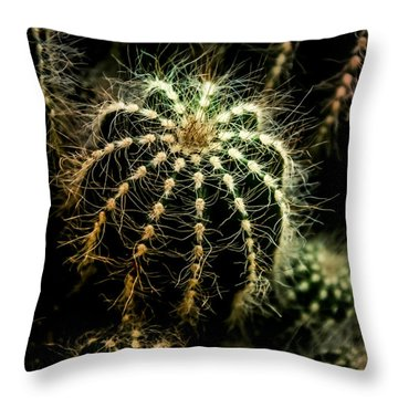 Soft Hearted Throw Pillow