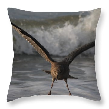 Soft Landing Throw Pillow