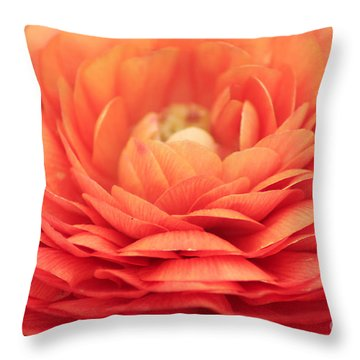 Soft Layers Throw Pillow by Darren Fisher