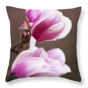 Soft Magnolia Blossoms Throw Pillow by Shelly Gunderson