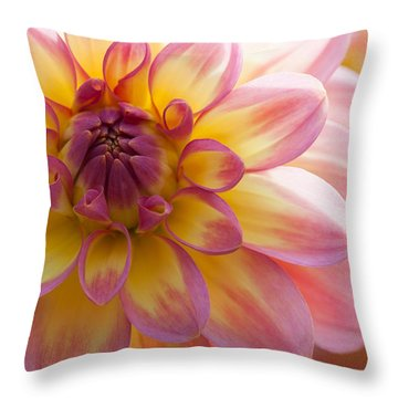Soft Throw Pillow
