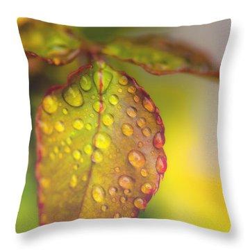 Soft Morning Rain Throw Pillow