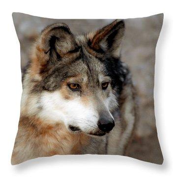 Soft N Beautiful Throw Pillow