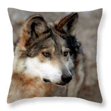 Soft N Beautiful Throw Pillow