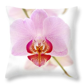 Soft Orchid Throw Pillow by Hannes Cmarits