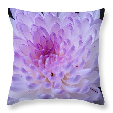 Soft Pink Mum Throw Pillow by Garry Gay