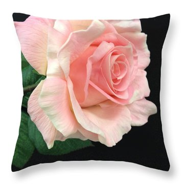 Throw Pillow featuring the photograph Soft Pink Rose 1 by Jeannie Rhode