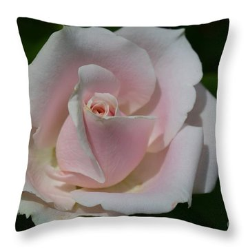 Throw Pillow featuring the photograph Soft Pink Rose by Jeannie Rhode