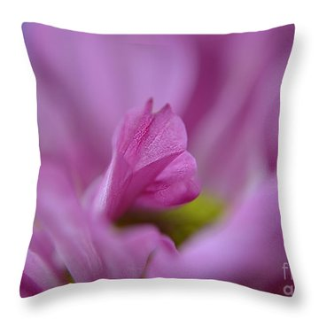 Soft Purple Throw Pillow by Michelle Meenawong