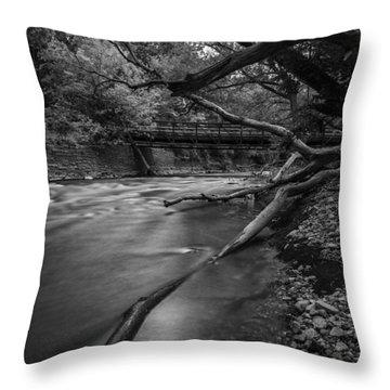 Soft Reflected Throw Pillow by CJ Schmit