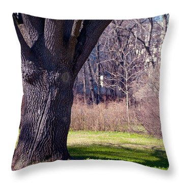 Soft Rosy Spring In The Garden Throw Pillow by Jenny Rainbow