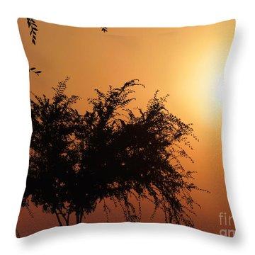 Soft Sunrise Throw Pillow