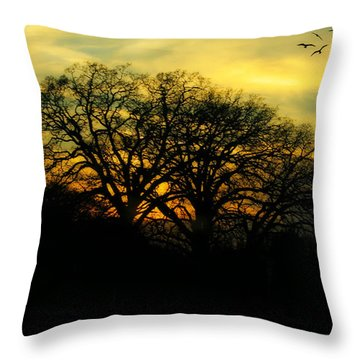 Soft Sunset Throw Pillow by Joan Bertucci