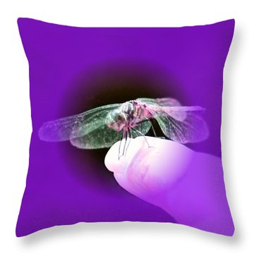 Soft Touch Throw Pillow by Barbara S Nickerson
