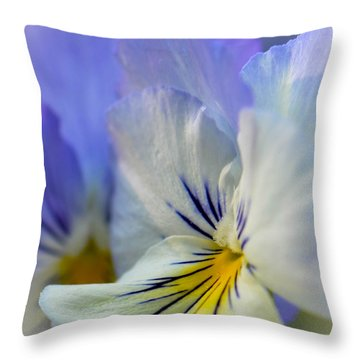 Soft White Pansy Throw Pillow by Amy Porter