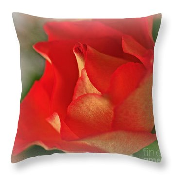 Soften Rose Throw Pillow