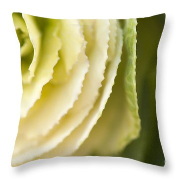 Softly Green Throw Pillow by Anne Gilbert