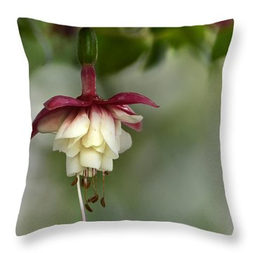 Softly Hanging Throw Pillow