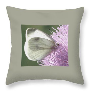 Softly Into Summer Throw Pillow