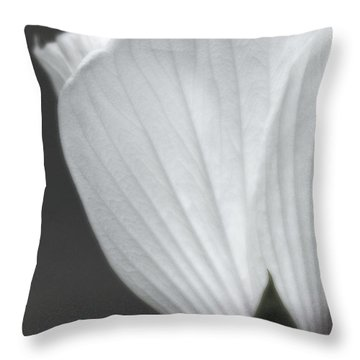 Softly Now Throw Pillow