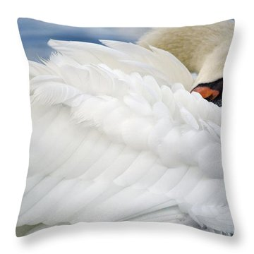 Softly Sleeping Throw Pillow