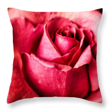 Throw Pillow featuring the photograph Softly by Wallaroo Images