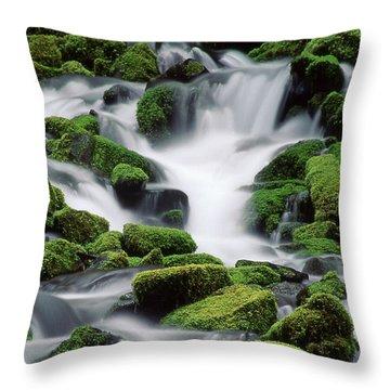 Sol Duc Stream Throw Pillow